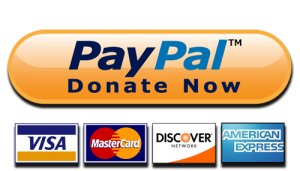 PayPalDonateNow-1-300x171